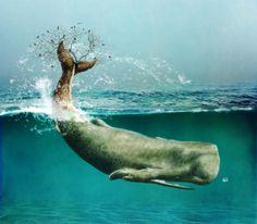 A whale's Tale. Biomechanical whale. Digital art.