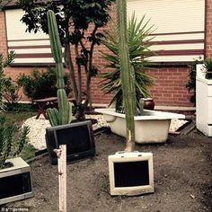 Where technology meets nature: This front yard looks more scrapheap than tranquil garden Garden Features, Water Features, Decorative Fountains, Make Do And Mend, Astro Turf, Unusual Plants, Paving Stones, Window Frames, Topiary