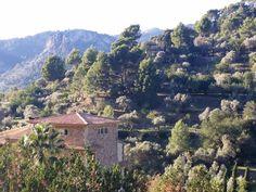 Romantik in den Bergen von Mallorca Bunyola liegt etwa 15 Kilometer von Palma entfernt. Das Dorf befindet sich auf dem Weg nach Soller kurz vor dem Tunnel. Hier präsentieren wir einige Fotos von Bu… Bergen, Grand Canyon, River, Nature, Outdoor, Pictures, Majorca, Outdoors, Naturaleza