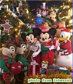 Disney Christmas in Florida