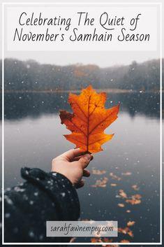 Elogio alla paura e l'antidoto per non evitarla. Fall Pictures, Fall Photos, Pretty Pictures, November Pictures, Milan Kundera, Christmas Photo, Autumn Aesthetic, Autumn Cozy, Autumn Photography