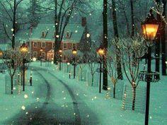 I love winter time! Winter Lane, Bowman's Hill, Pennsylvania