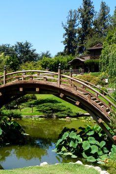 Favorite places spaces on pinterest - Huntington beach botanical garden ...
