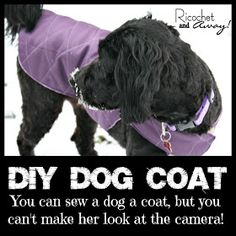 246 best sewing for the puppy dogs images on pinterest dog diy dog coat solutioingenieria Image collections
