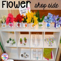 Flower shelf in our Flower Shop Dramatic Play for a spring theme, Mother's Day theme, or summer theme when everything is growing and blooming. Any preschool, pre=k, and kindergarten kiddos will LOVE it (and learn a ton too). Dramatic Play Themes, Dramatic Play Area, Dramatic Play Centers, Preschool Centers, Preschool Themes, Preschool Activities, Spring Theme For Preschool, Preschool Flower Theme, Drama Activities