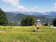 Trailrun Wien Mountains, Nature, Travel, Obstacle Course, Snow Mountain, Alps, Adventure, Naturaleza, Viajes