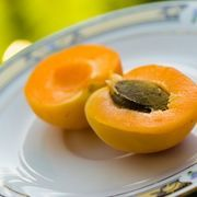 Apricot seeds are obtained from the pulpy, golden-yellow fruit of the apricot tree (Prunus armeniaca L. The apricot is native to 356 - Healthy Food Network Apricot Tree, Apricot Seeds, Be Natural, Natural Health, Natural Herbs, Healthy Foods To Eat, Healthy Life, Healthy Choices, Healthy Living