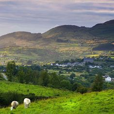 The foothills of Slieve Gullion South Armagh Armagh, Ireland, Mountains, Holiday, Nature, Travel, Instagram, Voyage, Vacations