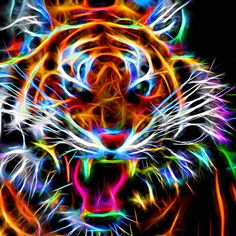 """A beautiful neon-style abstraction of a fierce tiger . An artwork by Andreas Thust.--------------------------------WINNER (tie) in contest""""N is for Neon""""ended on February 2016272 artworks participating-------------------------------- Big Cats Art, Cat Art, Dream Catcher Sketch, Cute Tigers, Foto Top, Digital Art Photography, Tiger Art, Art Deco Posters, Wildlife Paintings"""