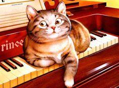 Cat & Music by Makoto Muramatsu