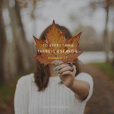 The Word For The Day Quotes, fall leaves, fall, autumn, bible verse, bible quote, christian quote, inspiration, seasons