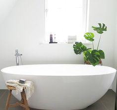 Ovaal vrijstaand bad met monstera blad. Mooie mix van modern en urban jungle. // via @anitaaeedelbloedt
