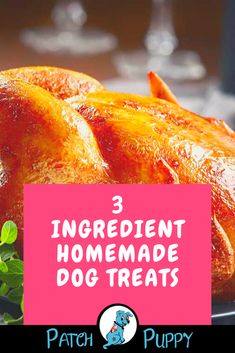 Dogs love treats but store bought treats can contain ingredients we don't want to give our dogs. Learn how to make a dog treat using only 3 ingredients. Easy Dog Treat Recipes, Easy Homemade Recipes, Dog Food Recipes, Diy Dog Treats, Homemade Dog Treats, 3 Ingredient Dog Treats, Peanut Butter Dog Treats, Natural Peanut Butter, Cut Out Cookies