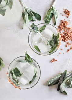Happy Hour: Honey Sage Gin Fizz by Jessica of How Sweet It Is | threadsence.com
