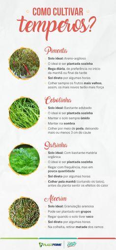 Eco Garden, Home Vegetable Garden, Indoor Garden, Grow Home, Home Room Design, Plants Are Friends, Frozen Vegetables, Green Life, Botany