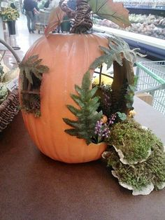 Fairy Garden using a pumpkin (must be home b4 midnight hmm?  Hee hee! I am always home bound anyway.... ie not a party animal