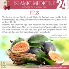 Figs are regarded as one of the richest fruits in vitamins, especially B1, B2, C, carotene and, first and foremost, vitamin A. They also contain a high level of nutrients, especially iron, calcium and copper, #DarussalamPublishers #IslamicMedicine #IslamicEBooks #AmazonKindle  #KindleStore #BarnesAndNoble