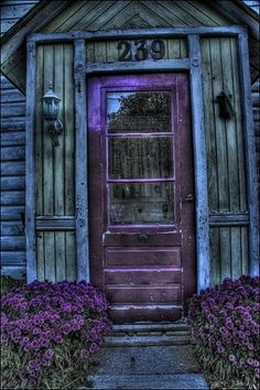 rustic purple - My Mom painted our front door (and Mailbox) deep purple growing up . always ahead of her time! Love the purple lavender by the doors - Cool Doors, The Doors, Unique Doors, Windows And Doors, Front Doors, Front Porch, Door Knockers, Door Knobs, Purple Door