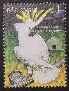 Cacatua sulphurea Parrots Malaysia Bird by PassionGiftStampArt