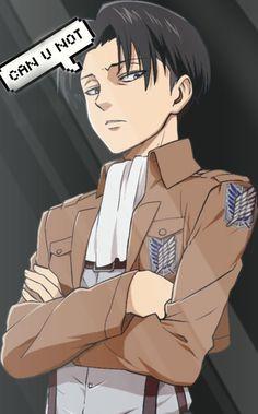 Levi Ackerman | Heichou | Rivalle |  Attack On Titan | Shingeki No Kyojin | Anime | Png | Wallpaper | Transparent