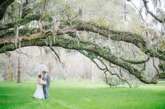 Rainy day wedding photos at MAGNOLIA PLANTATION in Charleston, SC » Aaron and Jillian Photography