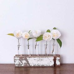 Decorate with test tube bases 10 micro stylish ideas for Bois flotte vase
