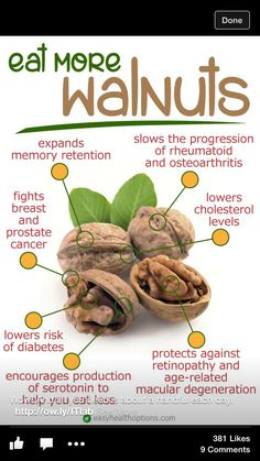 Eat them up  Walnuts