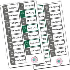 30 Day Squat Challenge Stickers