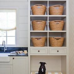 Laundry Room Dog Bed, Cottage, laundry room, Harrison Design Associates