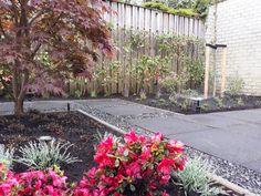 Achtertuin aangelegd door TuinKeur Hovenier Langens Hoveniers. Plants, Flora, Plant, Planting