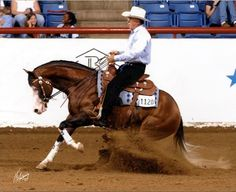 reining horses sliding | Sold Horses Winner's Circle « Haverty Ranch