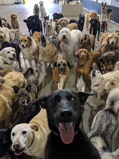 #SquadSelfie from the daycare! - more at superhuggable.com