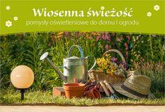 Co miesiąc nowa tematyka do odkrycia na Lampy.pl