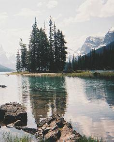 wilderness//