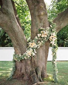 garland draped on a big tree