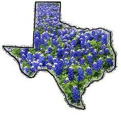Texas and blue bonnets Texas Pride, Southern Pride, Texas Forever, Texas Bluebonnets, Loving Texas, Lone Star State, Texas History, Texas Homes, Texas Travel