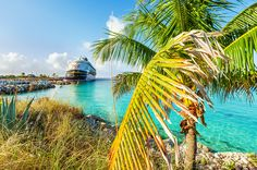 Castaway Cay is Disney Cruise Line's private island in the Bahamas, and is a common port of call for virtually all Disney Caribbean-bound cruise ships. Thi.