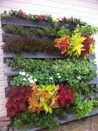 Resultado de imagen para paredes de jardin con palets