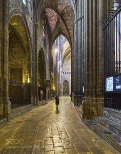Catedral de Santa María de Gerona by neobit. @go4fotos