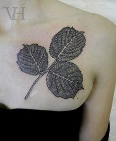 Image result for quaking aspen leaf tattoo