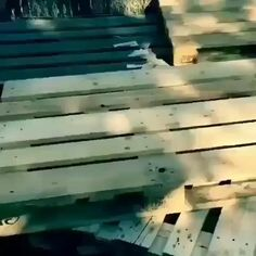 "Have you ever wanted to build something, because you cannot find it ""retail""? Thought of making something custom for a specific need? Struggled to find detailed plans to build your dream project? Check the link in my BIO and get The World's…Read Scrap Wood Projects, Diy Pallet Projects, Pallet Ideas Videos, Pallet Ideas For Bedroom, Pallet Garden Furniture, Diy Furniture, Furniture From Pallets, Furniture Stores, How To Build Pallet Furniture"