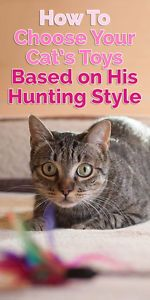 What kind of hunter is your cat? Did you know that will impact what type of toy he'll enjoy playing with? This guide will help you understand how to choose your cat's toys based on his unique style of play!