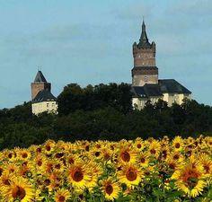 Burg_2_Kleve wird gruen.jpg (611×583)