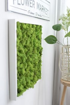 moss pictures and how you can easily preserve forest moss yourself. DIY moss pictures and how you can easily preserve forest moss yourself.,DIY moss pictures and how you can easily preserve forest moss yourself. Moss Wall Art, Spa Interior, Moss Garden, Diy Garden, Plant Painting, Plant Pictures, Mousse, Floral Wall, Plexus Products