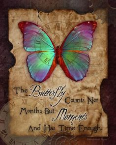 """Blue Butterfly Discover Steampunk butterfly art print from The Vintage Angel """"The butterfly counts not months but moments and has time enough"""" Butterfly Quotes, Butterfly Pictures, Butterfly Gifts, Butterfly Cards, Dragonfly Quotes, Butterfly Kisses, Morpho Butterfly, Butterfly Drawing, Butterfly Wallpaper"""