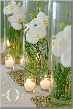 Orchid Centerpieces for Reception