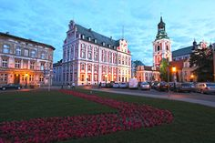 Bell Tower and City Hall Poznan Poland, framed by summer flowers and illuminated by night