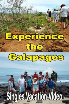 Enjoy our experience the Galapagos singles vacation video. Next time you can be in the video.