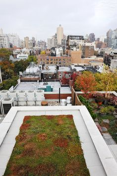Aiming for Truly Sustainable Buildings   New York Times via GR2Design Archive