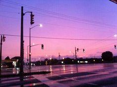 pink city lights .,